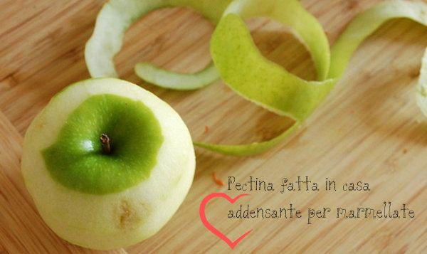 Pectina fatta in casa, addensante per marmellate... 500 g di scorze di agrumi 500 g di bucce e torsoli di mele e pere 750 ml di acqua il succo di 1 limone