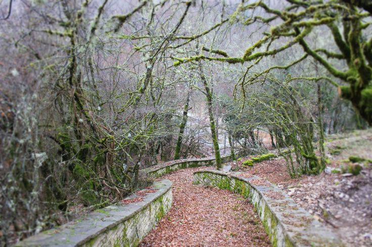 path at Monodendri village