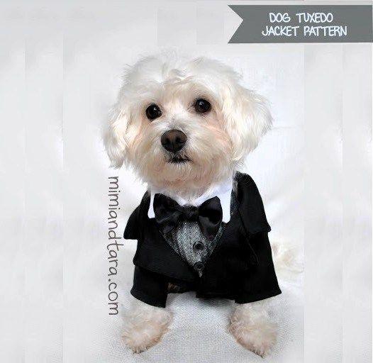 dog-tuxedo-jacket-pattern thumb