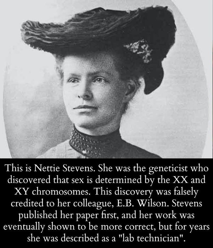 reminds me of people crediting watson and crick with the discovery of the double helix but it was really rosalind franklin who figured it out... absolutely despicable that so many remarkable women in math and science are discredited from their achievements simply because they're women.