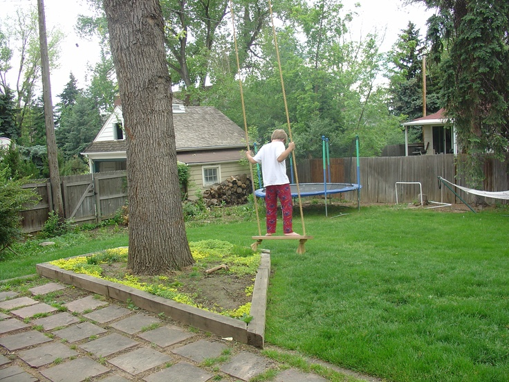 the tree swing in our backyard things i love in denver pinterest