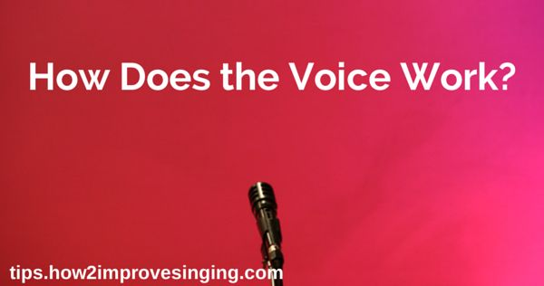 Click here to learn how your voice works: http://tips.how2improvesinging.com/how-does-the-voice-work/