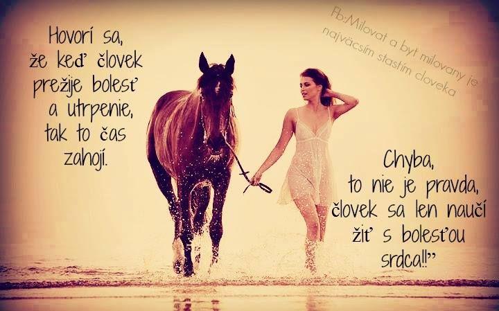 krása koně a ženy