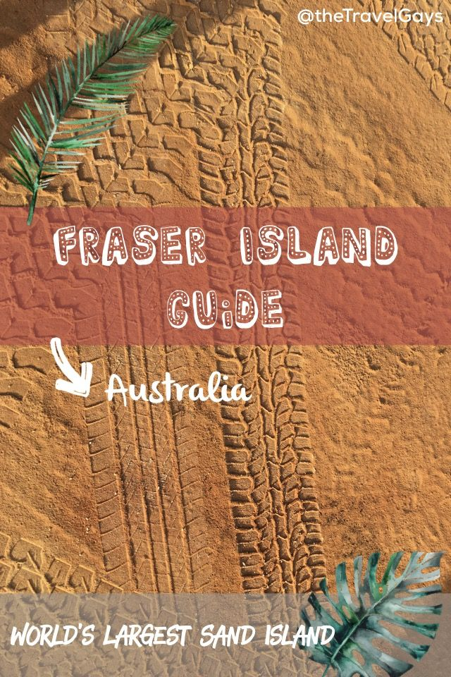 Going to Fraser Island soon? Don't miss out on our guide 💪🏼