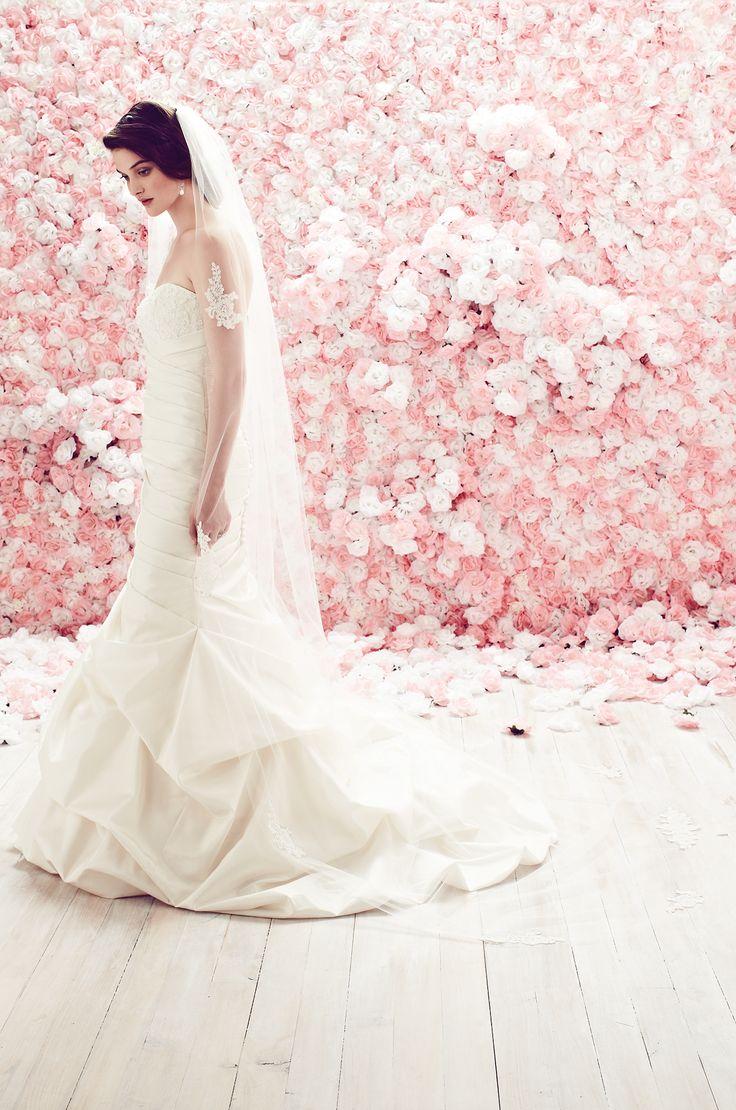 25+ best Bridal Veils | Mikaella Bridal images by Mikaella Bridal on ...