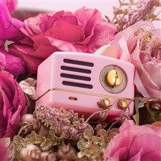 MAO KING Cat Pink Portable Bluetooth Mobile Radio Speaker Mini