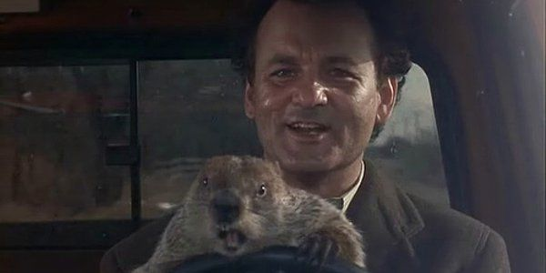Groundhog Day Being Turned Into A Musical image