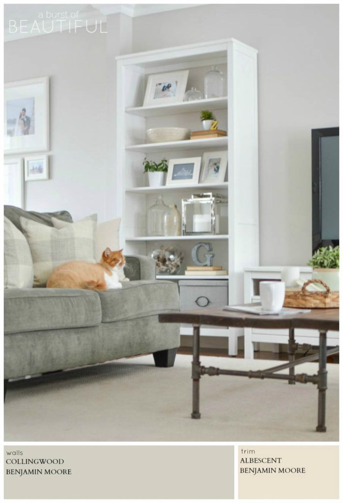 1000 Images About The Living Room On Pinterest Living