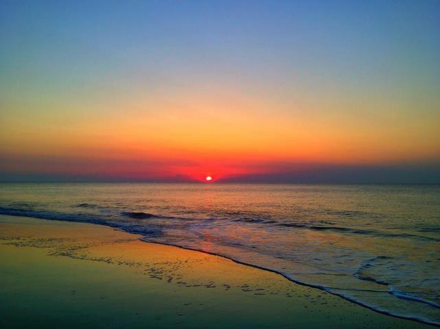 Palms, Sunrises and Isle of on Pinterest