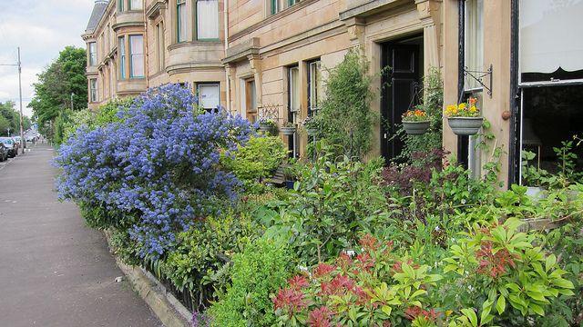 Glasgow tenement front garden | Flickr - Photo Sharing!
