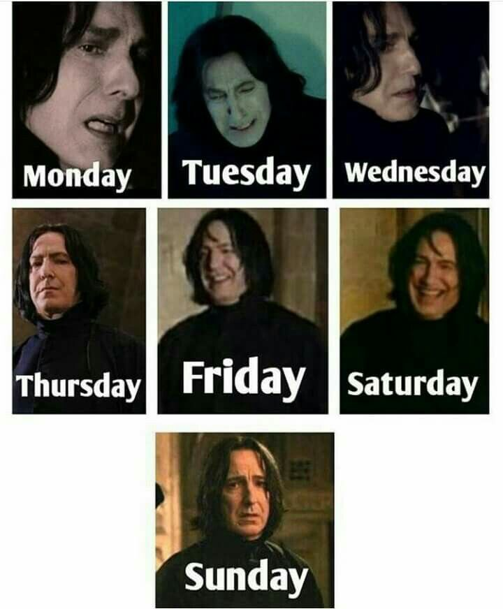 Snape's of the week