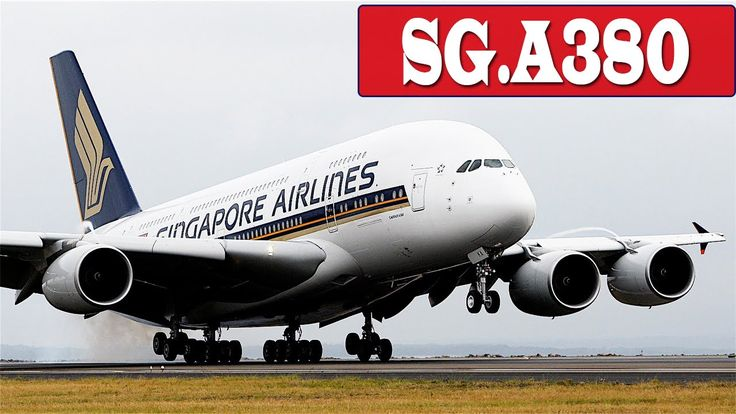 Singapore Airline A380, B777, A330 Landing To Changi Airport | Singapore Airline Flight Status | SQ