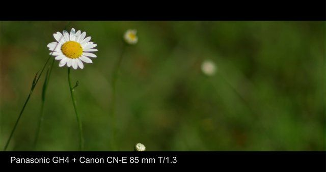 Test made by Filippo Chiesa with SmartSlider Reflex 410, the shortest useful slider made by SmartSystem. Lightness and portability are two of the best qualities of this DSLR camera slider.