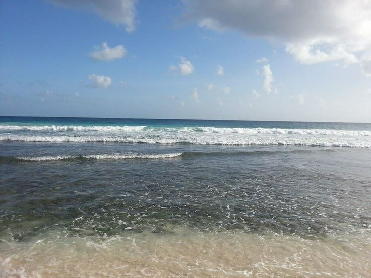 Cool col waters of Barbados