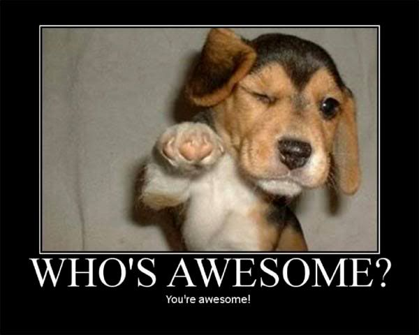 Image result for inspirational animals