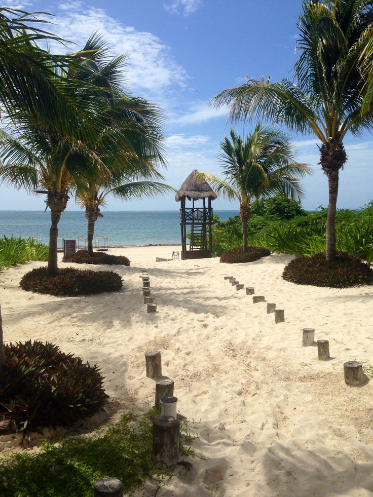 Moon Palace, Cancun, Mexico. Take me back
