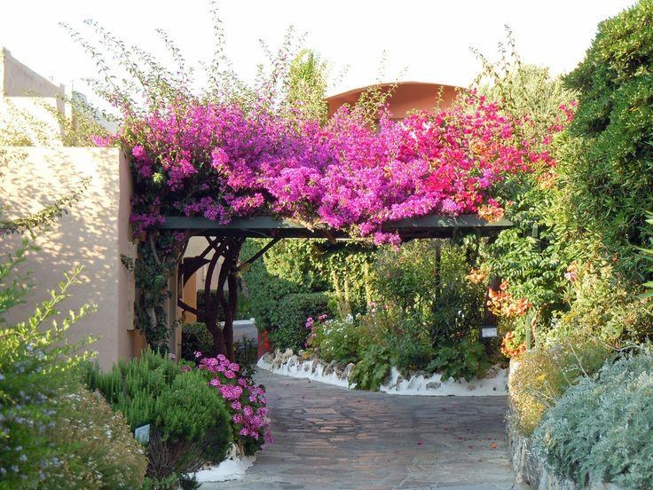 Aquila Rithymna Beach  Garden