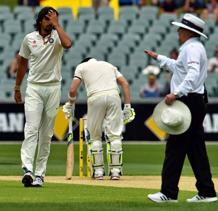 Pin on Cricket275