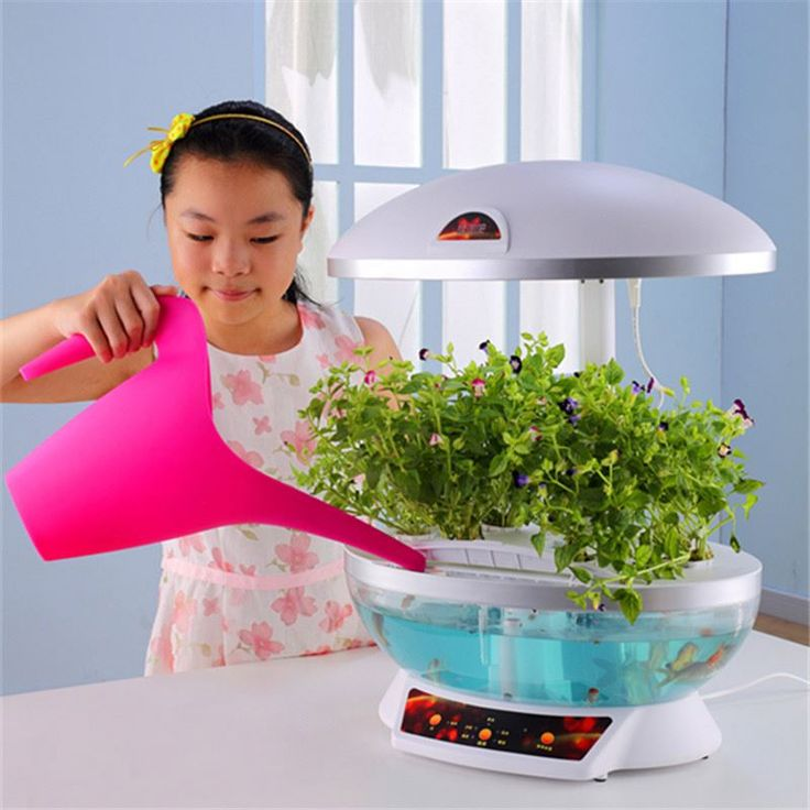 Home Garden best selling consumer electronics