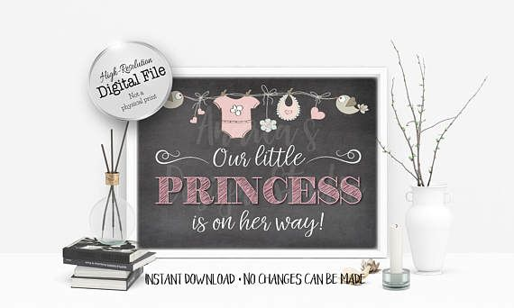 Our Little Princess Is On The Way Sign Baby Shower Sign Baby