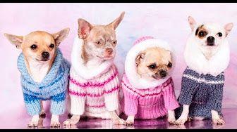 vestidos tejidos a crochet para mujer paso a paso - YouTube