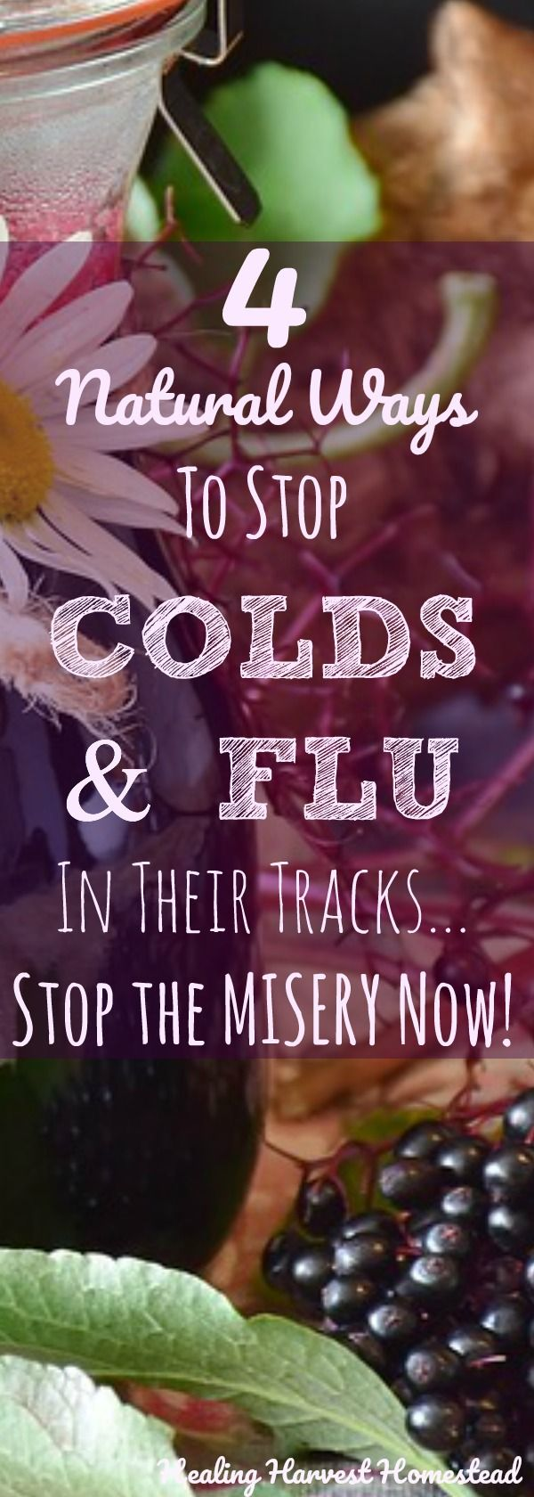 We all get sick from time to time. Sometimes it is just inevitable that you're going to get a cold or flu started in your body. So what to do? There are natural ways you can get rid of a cold or flu super fast if you just know what to do and do them right away, before that illness starts causing some real misery. Find out  how to get rid of a cold or flu quickly and naturally using herbs!