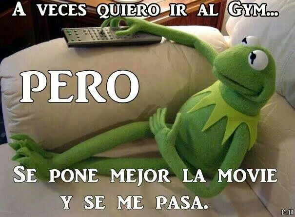 89 best Rana Rene images on Pinterest  Jokes Kermit and Spanish