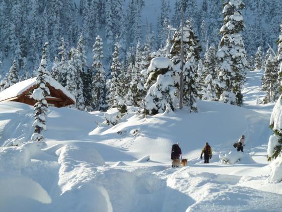 Kitimat Snow