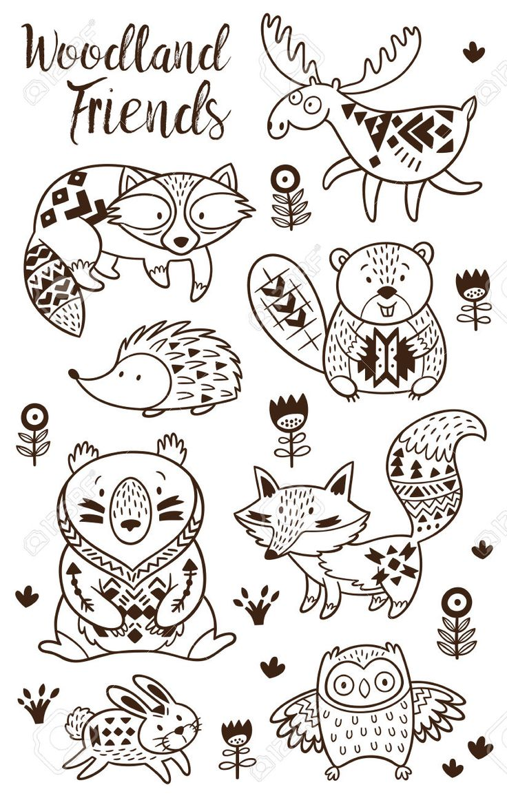 Woodland Animal Coloring Pages For Kids Hand Drawn Vector
