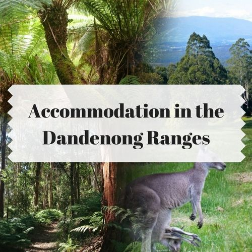 find accommodation in theDandenong Ranges. BnB's, Cottages & homes.