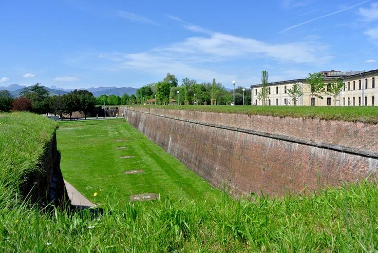 #Lucca#Mura (Foto di Barbara Palazzi)
