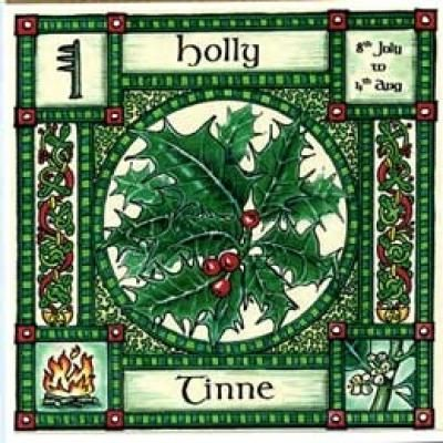 Holly, Ogham name Tinne, rules 8th July to 4th August, its element is that of fire and it has the totem Robin. Tinne gives us the word tinder for kindling fire. Holly planted near the house will protect the inhabitants from lightening and fires. The Robin singed his breast red when bringing the gift of fire from the sun.
