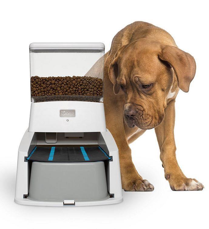Wagz Smart Dog Feeder With Portion Control Alexa Smart Dog Dog Feeder Pet Feeder