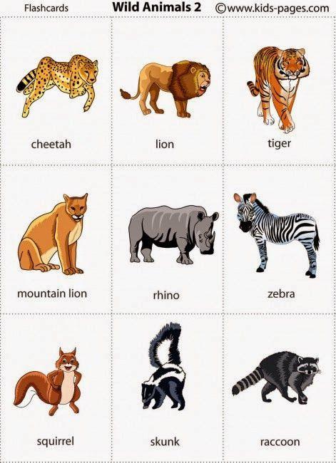 DICIONÁRIO ILUSTRADO                                  http://www.kids-pages.com/folders/flashcards/Autumn_2/page1.htm