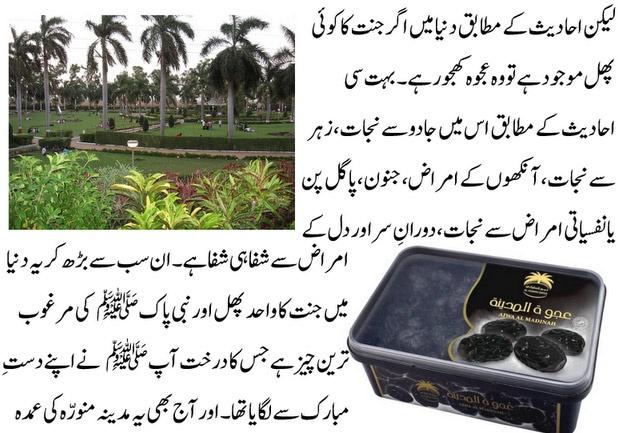 Ajwa Khajoor (Dates) Secrets Benefits History urdu
