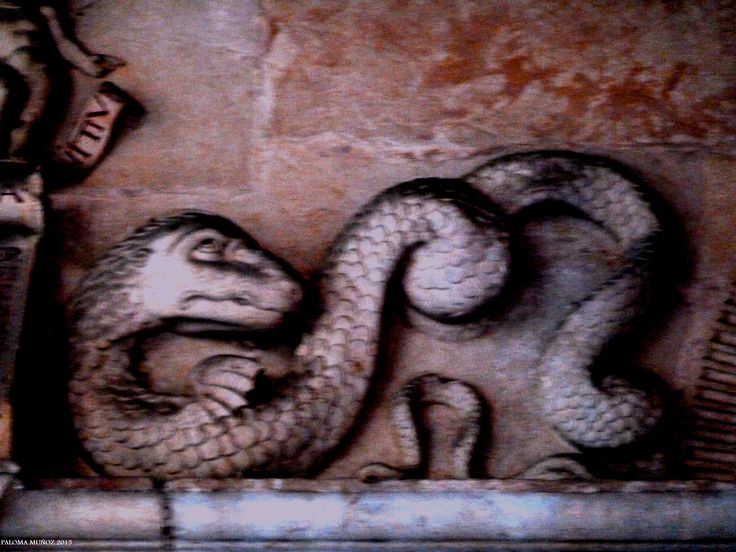 Hostal San Marcos, claustro. Serpiente de piedra. Cloister of the Hostal de San Marcos in Leon Stone serpent