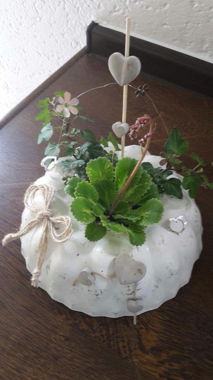 Beton Gugelhupf mit Deko und Pflanze