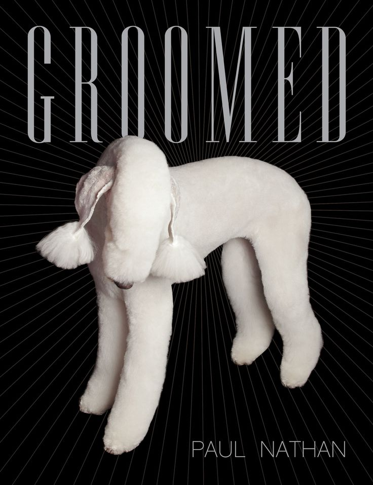 You can buy his book here.   These Pictures Prove The World Of Top Dog Grooming Is Really Quite Bizarre