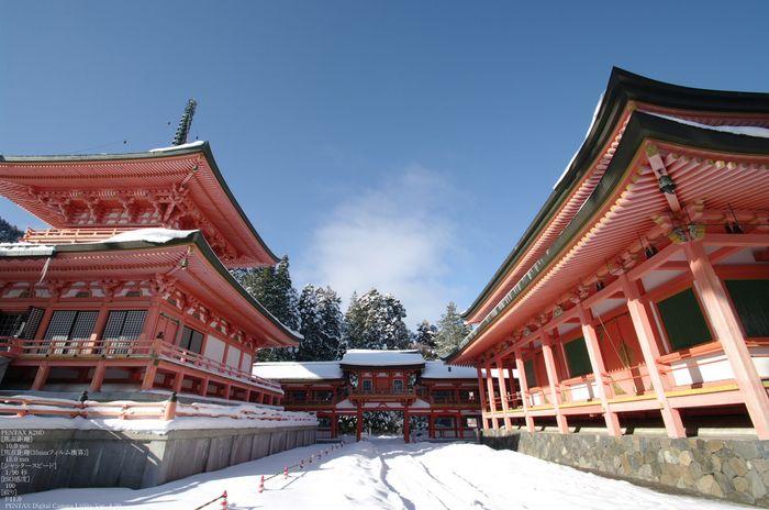 2011_比叡山・冬_75.jpg