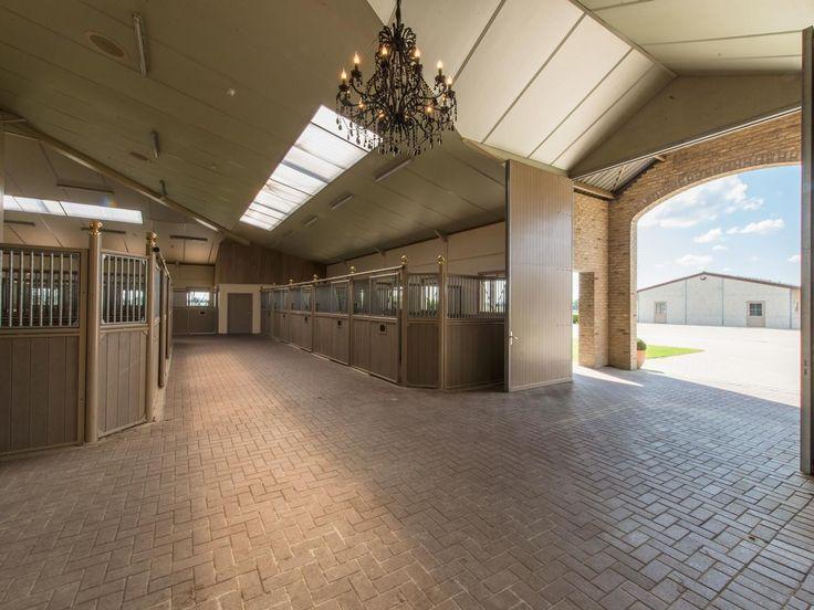Belgium equestrian facility - stable interior