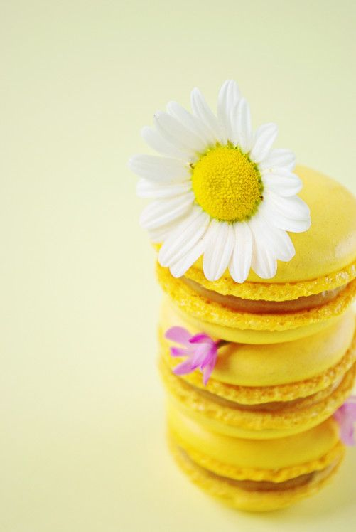 Macaron au caramel à la banane : http://www.confessionsdunegourmande.com/article-macarons-au-caramel-a-la-banane-105568320.html