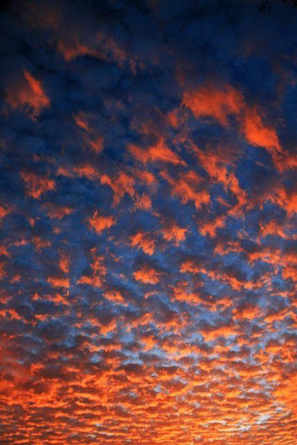 Auburn Sky #wareagle