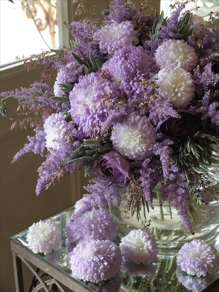 aster and scabiosa