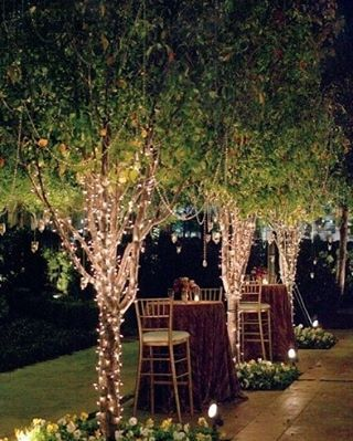 Amazing uplighting + #fairylights transform this #outdoorevent! Nice photo via #Louisvilleweddingblog by martin_rentmywedding. diy #celebration #fraternity #outdoorevent #corpevent #graduation #babyshower #barmitzvah #shower #gogreek #party #fairylights #sorority #rentmywedding #wedding #quince #batmitzvah #sweet16 #lighting #cpc #event #eventplanner #prom #ideas #birthday #uplighting #louisvilleweddingblog #bigday #inspiration #formal #eventprofs #meetingprofs #eventplanner #meetings…