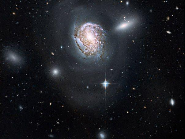 Орбитальный телескоп «Хаббл» сфотографировал скопление галактик, носящее красивое название Волосы Вероники / Интересный космос