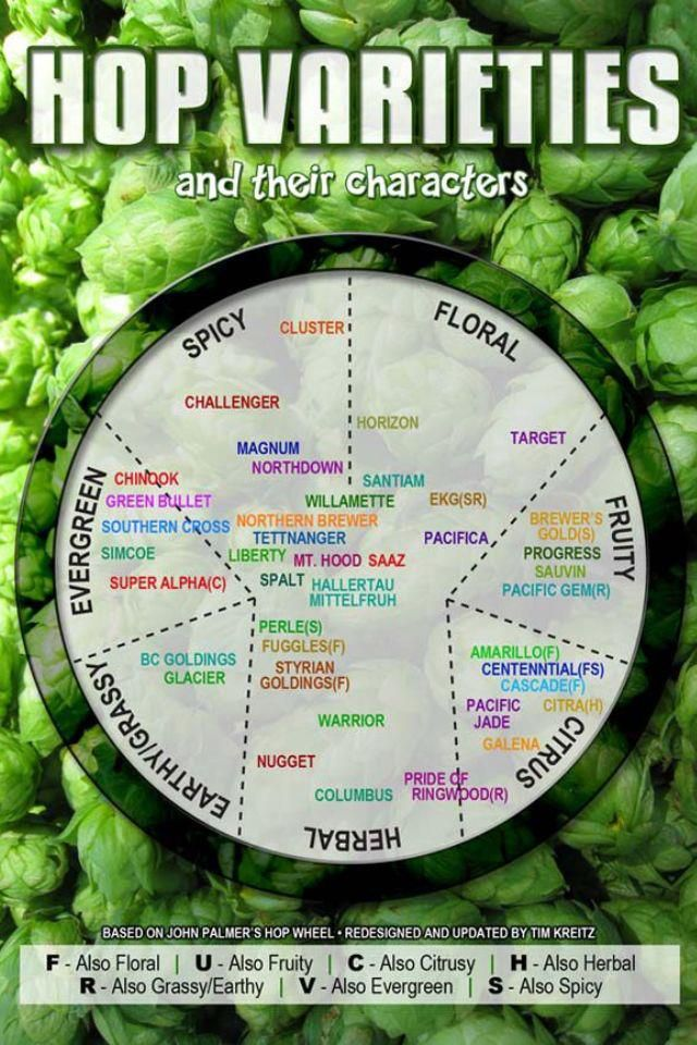 Hop types and their characters. Mmmmm, love citra and cascade, i'll definitely check out other citrus and herbal hops!