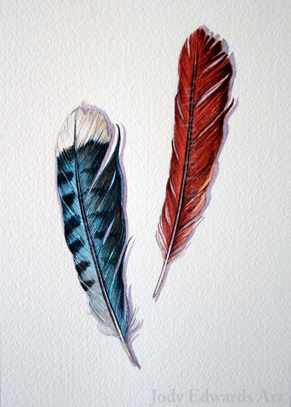 Blue Jay feather Cardinal feather Original watercolor by jodyvanB