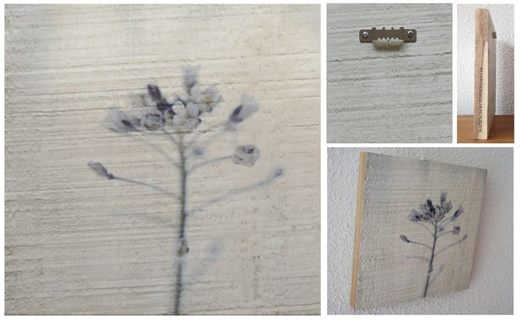 TINY SPLENDOR - Foto op hout, Photo on wood, print, afdruk, acaciahout, FSC keurmerk
