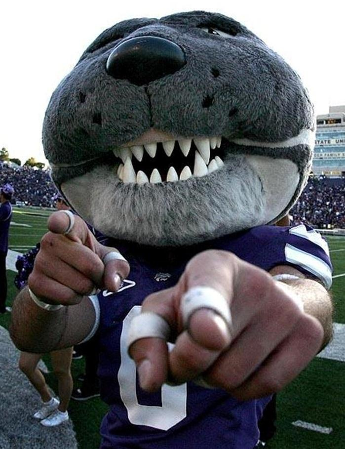 OK, I hate to admit this, but Willie creeps me out.  Other than that, purple all the way.