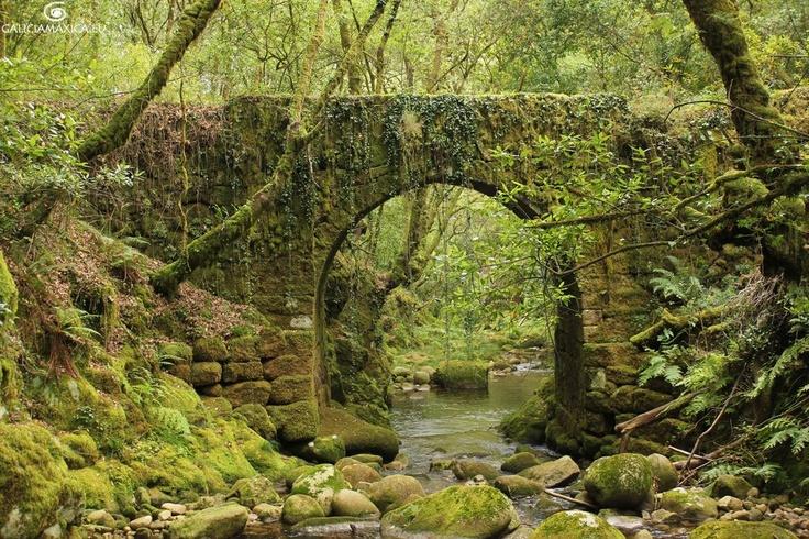 Puente sobre el río Alén